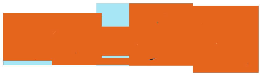 DaveZee